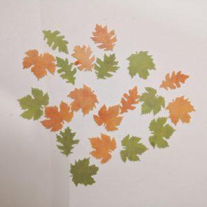 فیر پیپر تزینی خوارکی برگ پاییزی دو رنگ